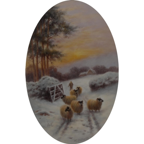 36 - An English Porcelain oval plaque, painted by Milwyn Holloway, signed, with black faced sheep in a wi...