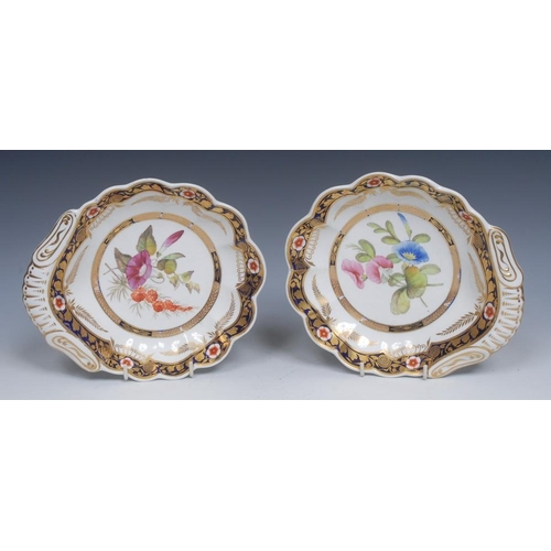 47 - A pair of Spode Botanical shell shaped dishes,  painted with colourful convolvolus, within in gilt h...