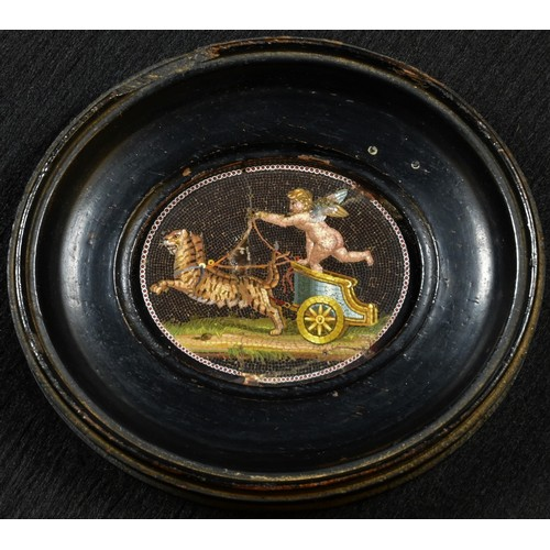 5042 - A 19th century Italian micromosic oval panel, depicting an amorino in a chariot drawn by tigers, 3.5...