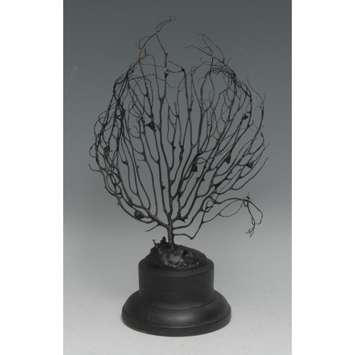 3799 - Natural History - a black coral specimen, mounted for display, 22cm high