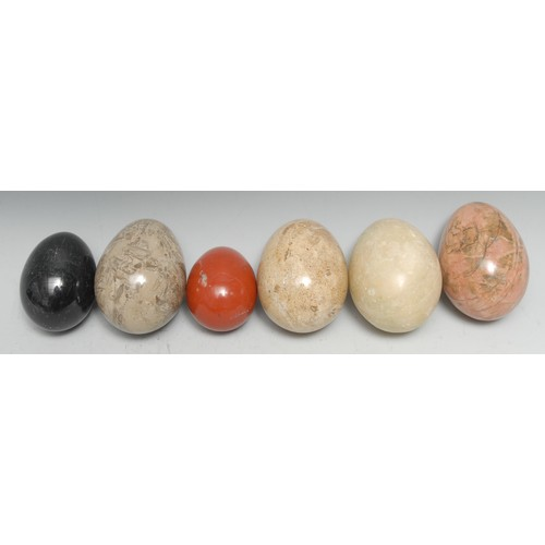 3623 - Geology - a collection of polished egg shaped specimens, various stones and sizes, the largest 7cm l...