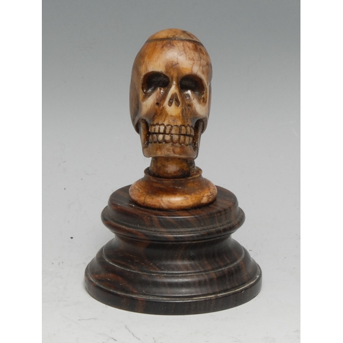 3681 - Memento Mori, The Macabre - a bone carving of a skull, hardwood base, 9cm high overall