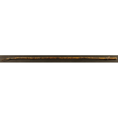 3019 - A 19th century brass mounted bamboo library book grab, 158cm long