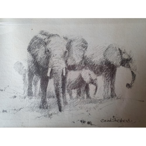 11 - David Shepherd, two works, an original artwork and limited edition book. An original pencil drawing ...