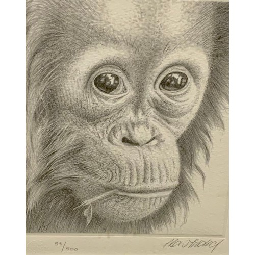 27 - Peter Hildick, by and after, Thinking of You, signed in pencil, limited edition 58/500, 16.5cm x 14c...