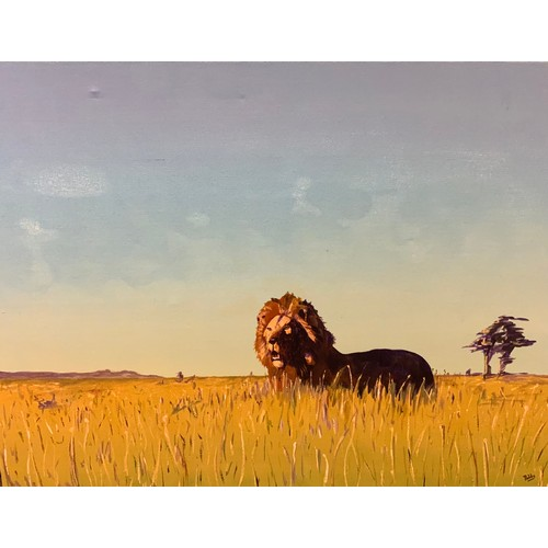 28 - Paddy Martin Dawn Free, with lion in grasses signed Paddy, oil on canvas, 91cm x 122cm  If you are s...