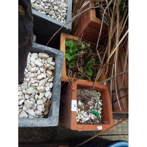 49 - Two Small Terracotta Planters...