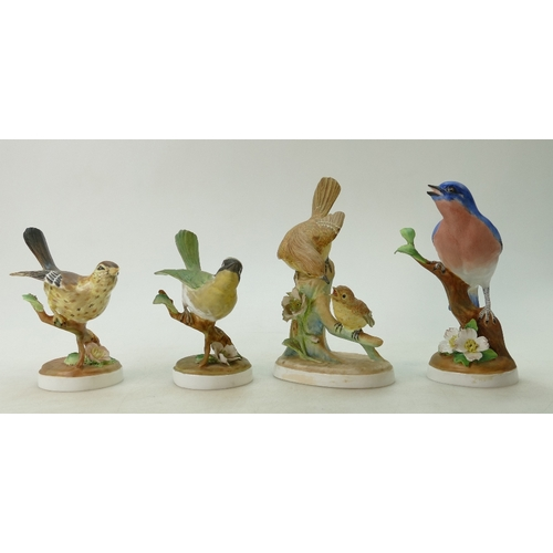 493 - A group of Crown Staffordshire birds to include a Mistle Thrush, Yellow Throat Warbler and a Flycatc...