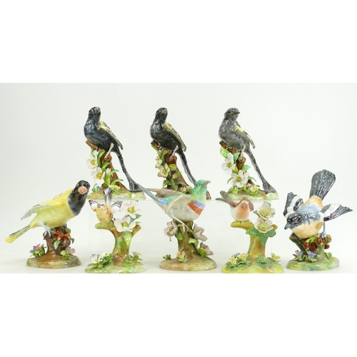 500 - Eight Crown Staffordshire models of birds by J T Jones including three of the Bind Widow and one of ...