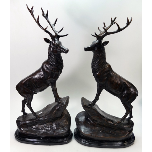 802A - A pair of Bronze Stags on a marble base. One looking left, one looking right. (2)...