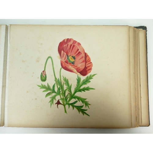 155 - A Victorian hand painted watercolour scrap album dated 1885 artist A Day, various full page illustra...