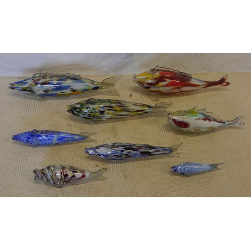 7 - 8 Glass fish...