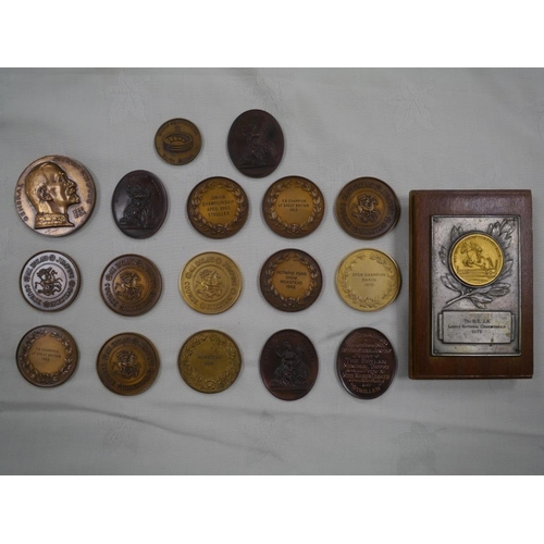 21 - Large quantity of showjumping medals won by Marion Coakes on