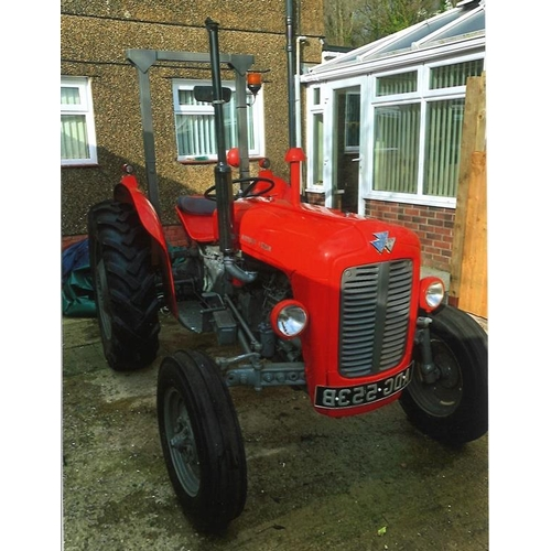 1587 - Massey Ferguson 35X tractor. 1964. Purchased in 2008. Refurbished 2009/10. Reconditioned engine etc,...