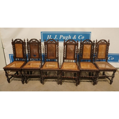 11 - Set of 6 high back carved cane seat dining chairs. A/F...
