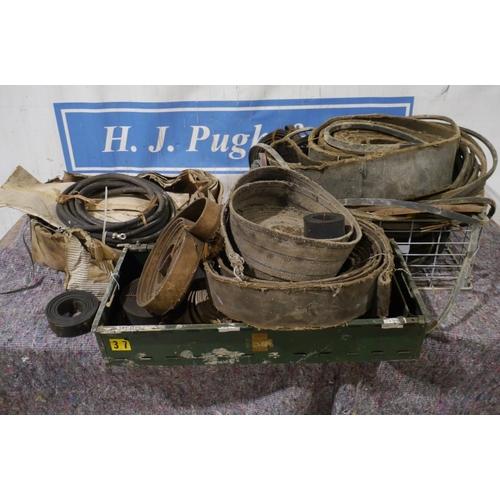 60 - Drive belts, fan belts and gaskets...