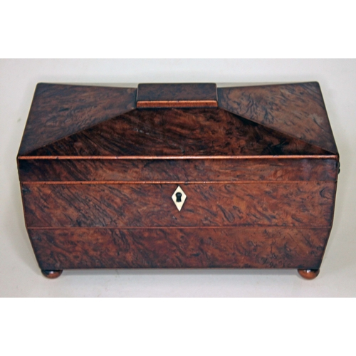 2 - A Regency burr yew tea caddy of sarcophagus form with lion mask handles, ivory escutcheon and ball f...