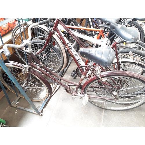76 - A vintage Raleigh bike...