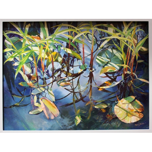 86 - Edwin Straker, water lilies, oil on board, 122cm x 92cm, signed lower right, white frame....