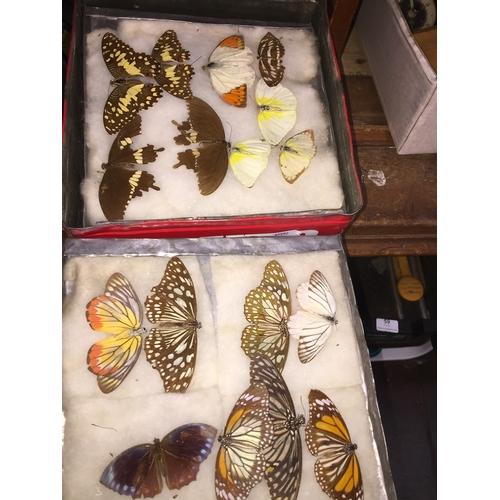 47 - A tin of butterflies...