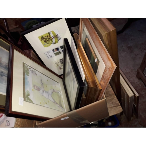 1049 - Assorted pictures and mirrors including framed Andy Murray mint stamps, a limited edition golfing pr...