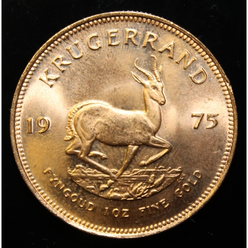 52 - South Africa, 1975 Krugerrand, 1 oz. fine gold (91.67%) ONLY 10% BUYER'S PREMIUM (INCLUSIVE OF VAT) ...