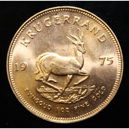 54 - South Africa, 1975 Krugerrand, 1 oz. fine gold (91.67%)  ONLY 10% BUYER'S PREMIUM (INCLUSIVE OF VAT)...