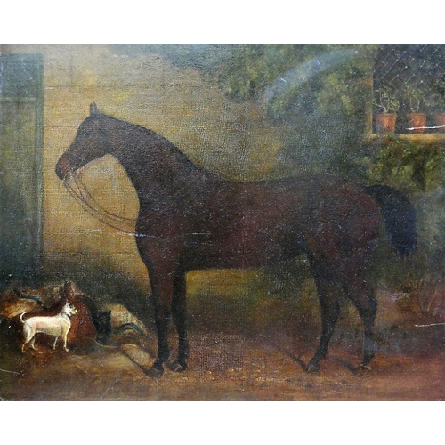 412 - 19th Century British Bay horse and white terrier Unsigned 40.5cm x 51cm Unframed...