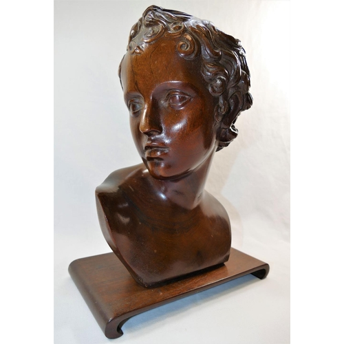 51 - A 19th Century carved mahogany bust of a young man in the classical manner, 30cm high, on mahogany s...