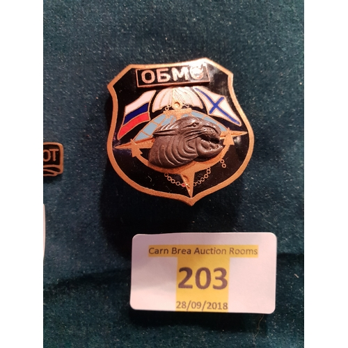 203 - Russian special forces navy badge...