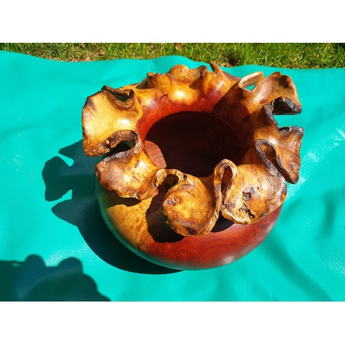 20 - Carved root Bowl...