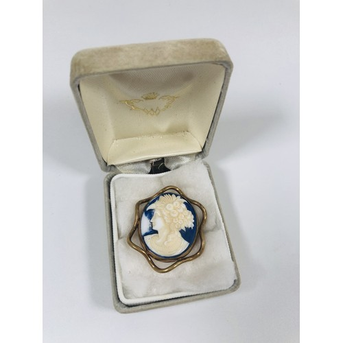25 - Vintage large, rare blue Cameo brooch, set in old gold/alloy surround....