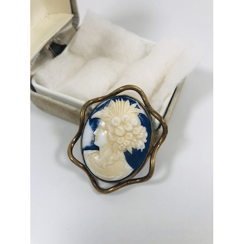 25 - Vintage large, rare blue Cameo brooch, set in old gold/alloy surround.
