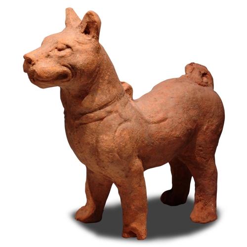 6 - DOG - CHINA, EASTERN HAN DYNASTY (25-220) Terracotta...