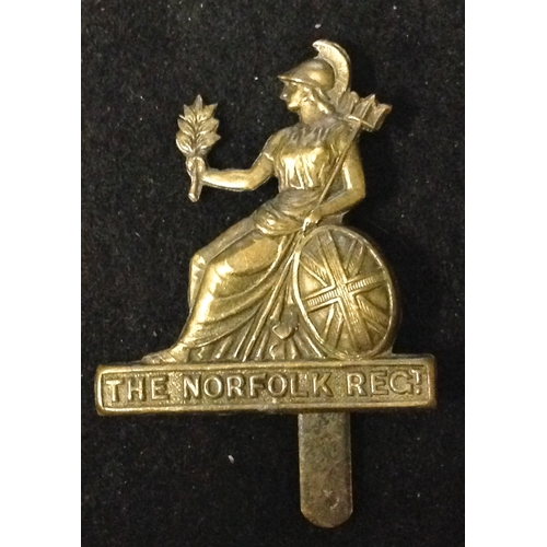 19 - <strong>Norfolk Regiment cap badge (Pre 1937 type)</strong><br /><br />Scroll below Britannia;