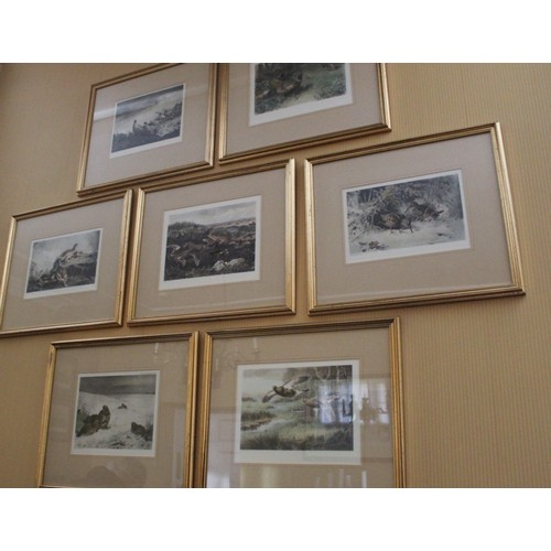 32 - Set of 7 Game Bird Prints. Pheasant, Duck, Snipe, Partridge and Grouse. 450mmW x 400mmH...