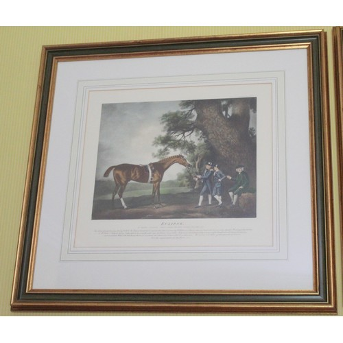56 - Set of 8 Racing Throughbred Prints. 660mmW x 620mmH. Featuring The Throughbreds, Eclipse, Diomed, Ki...