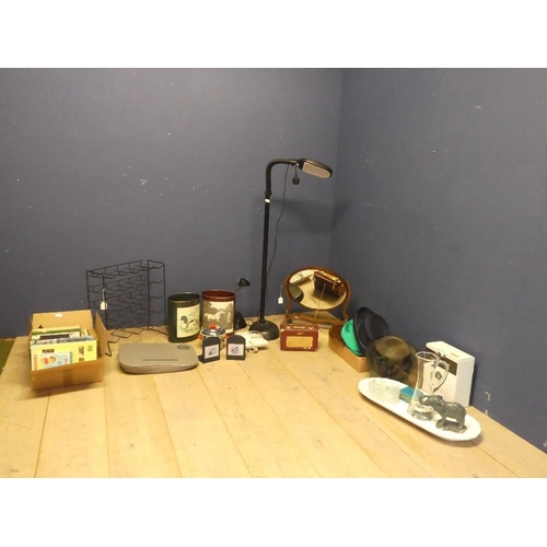 13 - Qty of general items to include lamps,bins,glass jug, hats, glasses, books, bottle holder, Roberts r...