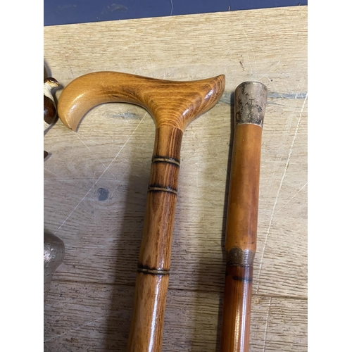 12 - Qty of various walking sticks, canes, shepherds crooks...