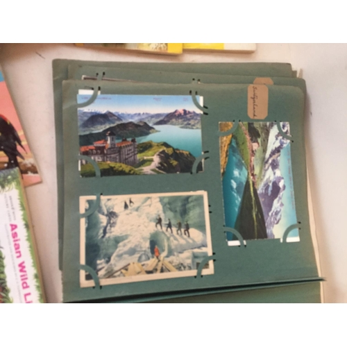 8 - Quantity of postcards from around the world, C20th and possibly earlier, and to include Historical p...