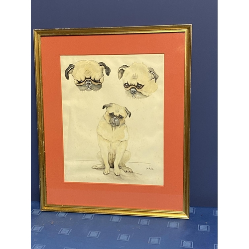 31 - Framed and glazed ink & pencil/mixed media study of Pug dogs, signed lower right MAD, overall size i...