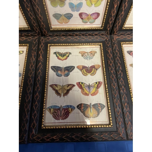 64 - Good set of 8 modern framed and glazed modern prints of butterflies, overall including frame 35 x 26...