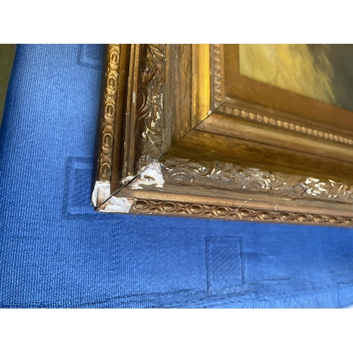 18 - Oil on canvas,  Study of a C19th style  bay horse in stable,  signed J Campion to the rug on the sta...