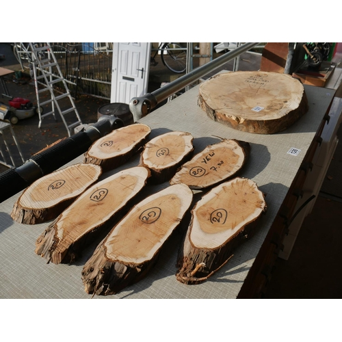 127 - SPALTED BEECH RING PLUS 7 PIECES OF YEW...