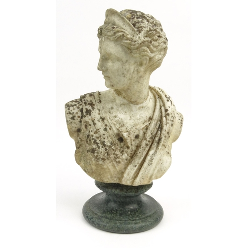 12 - Antique marble bust of Juno, 42cm high...