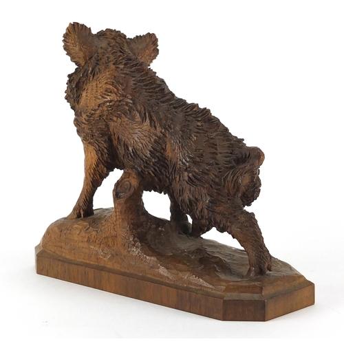 45 - Black forest carved wild boar, 15.5cm in length...