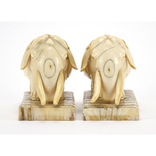 462 - Pair of carved ivory elephants raised on rectangular elephant teeth bases, each 13cm wide...