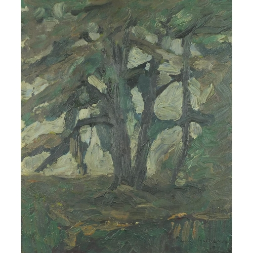2176 - Study of a tree, impasto oil on canvas, bearing an indistinct signature possibly Turbact, mounted an...