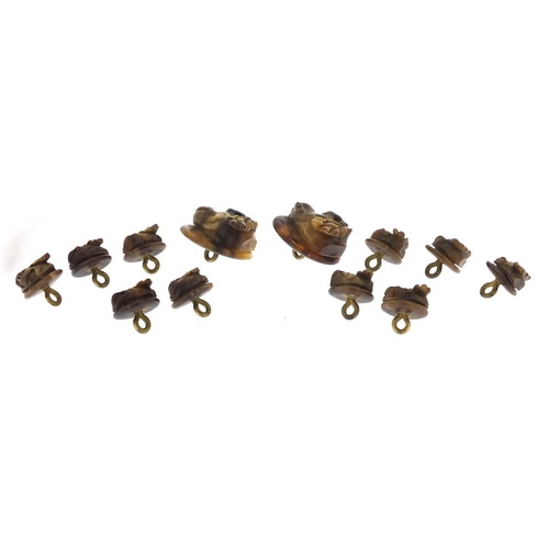 48 - Set of ten carved horn St Bernard dog buttons and two larger examples, the largest 2.7cm in diameter...