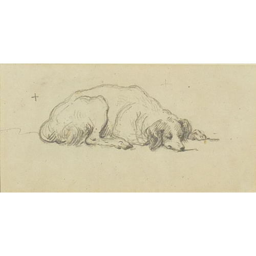 1155 - George Chinnery - Sleeping dog, pencil sketch on paper, label verso, mounted and framed, 17cm x 8.5c...